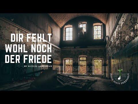 Nicolai Landwehr: Dir fehlt wohl noch der Friede
